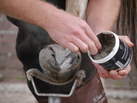 Unique-horn Natural Hoof Clay