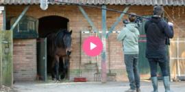 Documentaire: Van box naar buiten