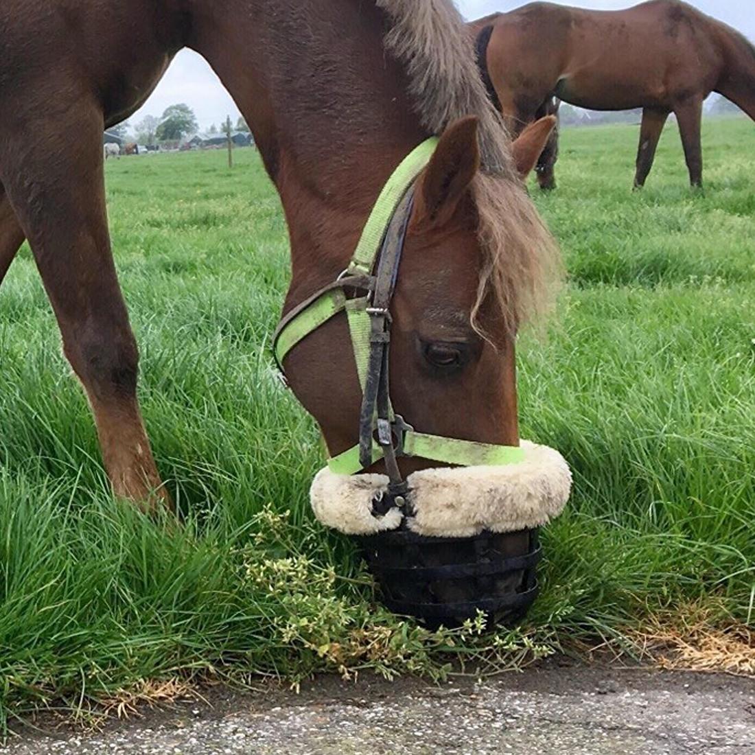 EasyGrazer Neo Graasmasker - PaardEerlijk