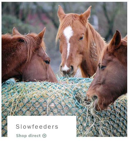 Slowfeeders