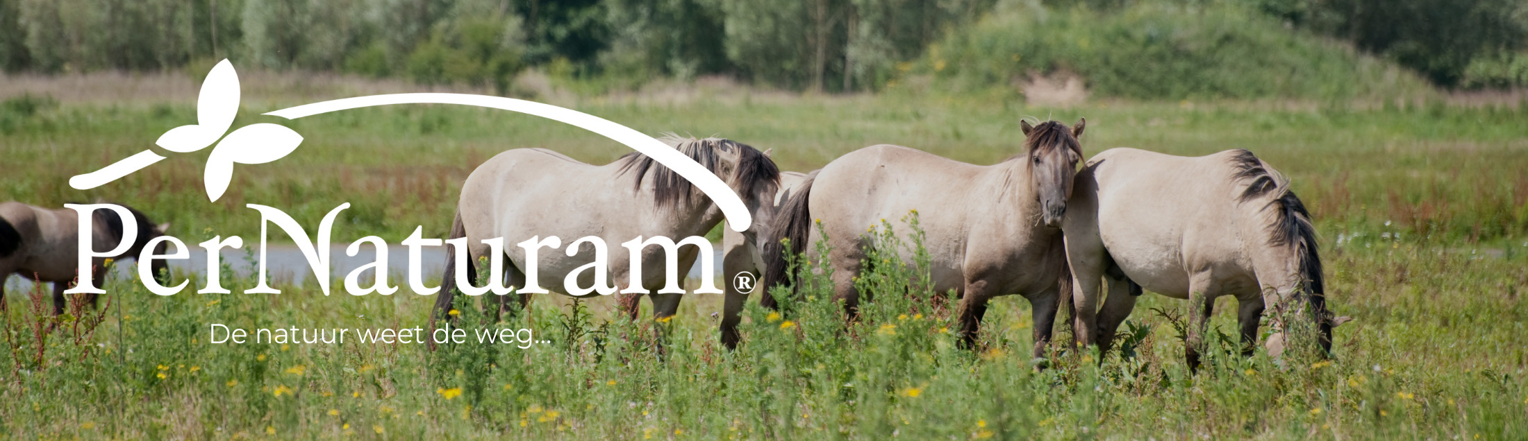 Per Naturam Paardenvoeding
