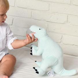 Mint Dinosaur Tyrannosaurus Rex- L