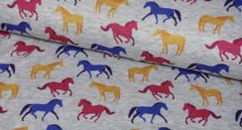 Color Horses