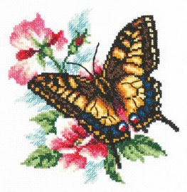 BUTTERFLIES: SWALLOWTAIL BUTTERFLY