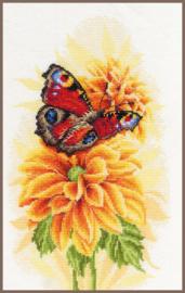 Home and Garden - De Fladderende Vlinder (aida )
