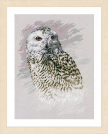SNOWY OWL - LANARTE