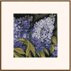 Home and Garden -  Lilac