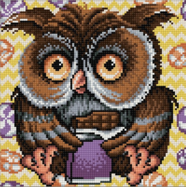 DIAMOND PAINTING KIT OWL AZ-1641