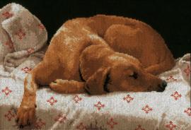 Animals - Slapende Hond (zwarte aida)