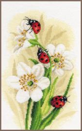 Home and Garden - De Parade van Lieveheersbeestjes (aida )