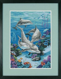 The Dolphins Domain - Dimensions (USA)
