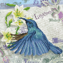 DIAMOND DOTZ HUMMINGBIRD TRAVELS - NEEDLEART WORLD