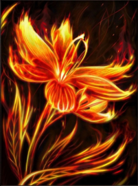 DIAMOND PAINTING FIRE FLOWER AZ-1852
