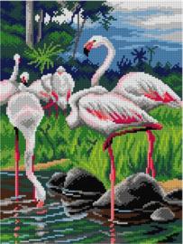 Voorbedrukt stramien FLAMINGOS - ORCHIDEA 30 x 40