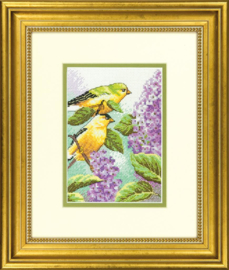 GOLDFINCH AND LILACS  - Dimensions (USA)