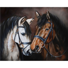 HORSE TENDERNESS WD2469 38 x 48 cm