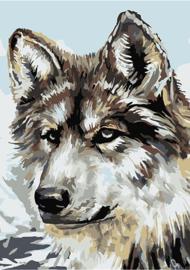 KLEINE Wizardi Paint-By-Numbers - WOLF (16.5 x 13 cm)