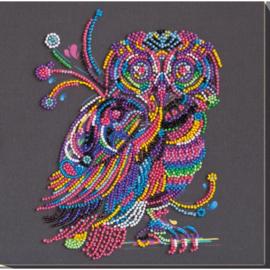 KRALEN BORDUURPAKKET NIGHT OWL - ABRIS ART