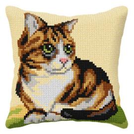 KRUISSTEEK KUSSEN ORCHIDEA - CAT