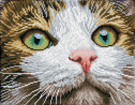 DIAMOND DOTZ GREEN EYED BEAUTY - NEEDLEART WORLD