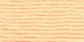 VENUS BORDUURGAREN #25 - 2718