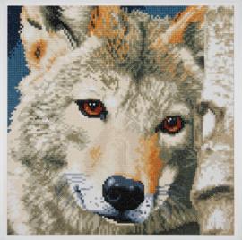 Wolf - Lanarte
