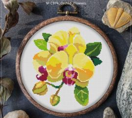 BORDUURPAKKET ORCHID FLOWERS - C974 VANAF 10,95