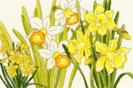 BORDUURPAKKET DAFFODIL BLOOMS - BOTHY THREADS