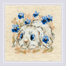 BORDUURPAKKET LITTLE BUNNY - RIOLIS