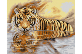 Voorbedrukt stramien TIGER - ORCHIDEA 40 x 50