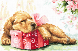 DOG: GUARDING YOUR GIFT