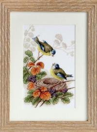 Birds in Nest - LUCA-S
