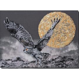 KRALEN BORDUURPAKKET NIGHTFLIGHT - ABRIS ART