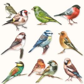 Ambiënte servetten 5st - Vogels 33x33cm