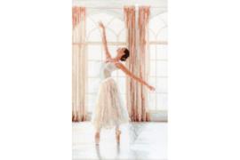 Borduurpakket LETI 906 Ballerina