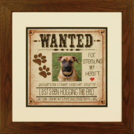 DOG WANTED - Dimensions (USA)