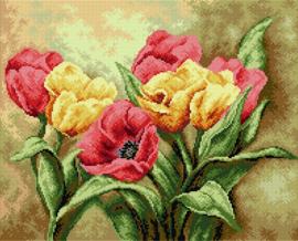 Voorbedrukt stramien TULPEN - ORCHIDEA 40 x 50