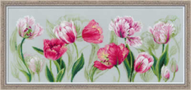 PREMIUM COLLECTIE RIOLIS - TULIPS