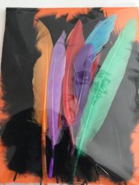 Set pluisveren zwart met gekleurde knutselveren