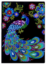 NOTEBOOK: PEACOCK