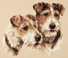 DOG: FOX TERRIERS