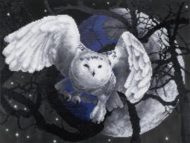 DIAMOND PAINTING FLYING OWL - FREYJA CRYSTAL