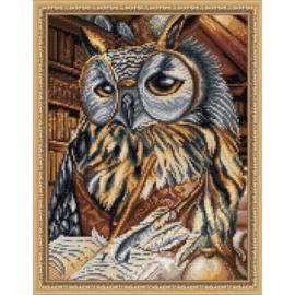 SMART OWL AZ-1737