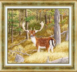 FOREST DEER S/DZH045 - GOLDEN FLEECE