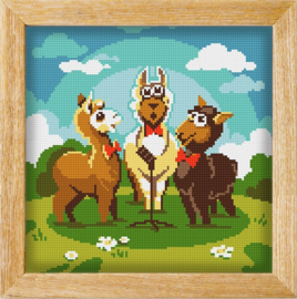 Diamond painting MANDALA FUNNY ANIMALS ALPACA CHOIR