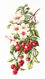 COMPOSITION WITH CHERRY (aida)