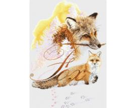 BORDUURPAKKET FOX - RTO