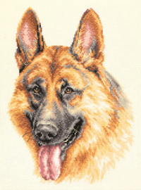 DOG: GERMAN SHEPHERD