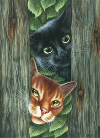 Diamond Painting  PEEK A BOO 30 x 40 cm