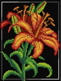 Voorbedrukt stramien FLOWERS - ORCHIDEA 18 x 24 (SET VAN 3)